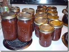 APPLE BUTTER TIME! (1/5)