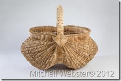 MitchellWebster_2