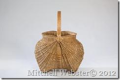 MitchellWebster_6-2