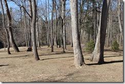 WildWood Park Bridgewater, VA 169
