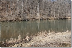 WildWood Park Bridgewater, VA 217