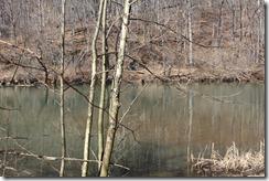 WildWood Park Bridgewater, VA 220