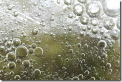 BUBBLES OIL & SOAP 6-05-2014 060