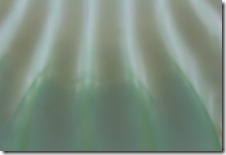 GERANIUMS 6-03-2014 059