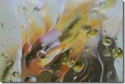 OIL & WATER PHOTOGRAPHY (4/6)