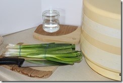 Storing Green Onions 002