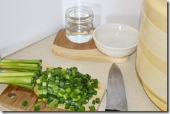 Storing Green Onions 003
