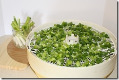 Storing Green Onions 007