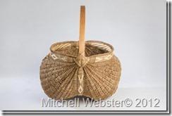 mitchellwebster_4-001_thumb1