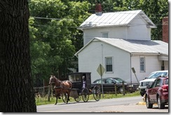 Old Order Mennonites Going Home from Church~Dayton, Virginia