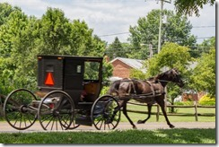 Horse & Buggies Going Home~ Dayton, VA (7 of 23)